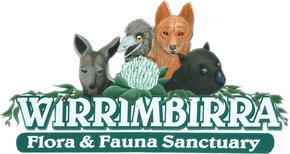Wirrimbirra Sanctuary - Accommodation Search