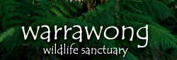 Warrawong Wildlife Park - Accommodation Search