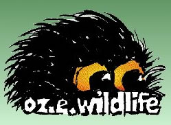 OZe Wildlife - Accommodation Search