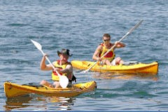 Manly Kayaks - Accommodation Search