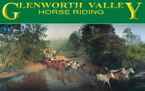 Glenworth Valley Horseriding - Accommodation Search