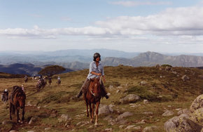 High Country Horses - Accommodation Search