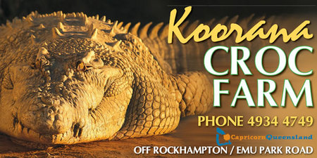 Koorana Saltwater Crocodile Farm - Accommodation Search