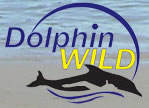 Dolphin Wild - Accommodation Search