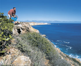 Cape Cuvier Coast - Accommodation Search
