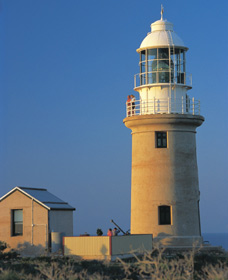 Vlamingh Head Lighthouse - Accommodation Search