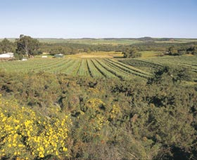Chapman Valley Scenic Drive - Accommodation Search
