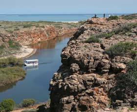 Yardie Creek Cape Range National Park - Accommodation Search