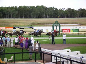 Pinjarra Race Club - Accommodation Search