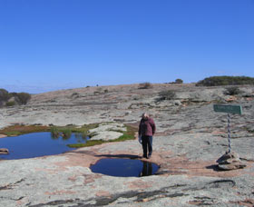 Dingo Rock - Accommodation Search