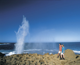 The Blowholes Carnarvon - Accommodation Search