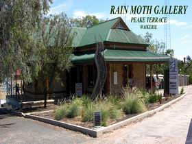 Rain Moth Gallery - Accommodation Search