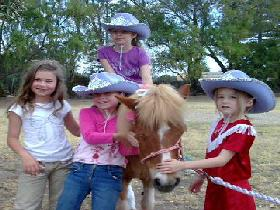 Amberainbow Pony Rides - Accommodation Search