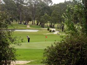 Mount Barker-Hahndorf Golf Club - Accommodation Search