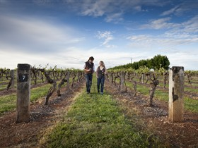 Coonawarra Wineries Walking Trail - Accommodation Search