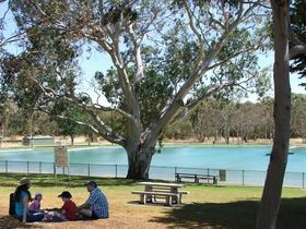 Naracoorte Nature Park and Swimming Lake - Accommodation Search