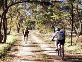 Bike About Mountain Bike Tours And Hire - Accommodation Search