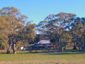 Old Wilpena Station - Accommodation Search