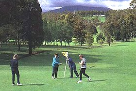 Deloraine Golf Course - Accommodation Search