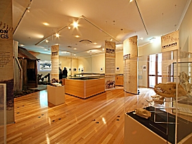 Tasmanian Tiger Exhibition - Accommodation Search