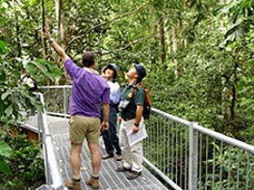 Daintree Discovery Centre - Accommodation Search