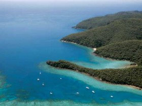 Butterfly Bay - Hook Island - Accommodation Search