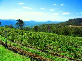 Preston Peak Wines - Accommodation Search