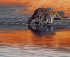 Steve Morvell Wildlife Art - Accommodation Search