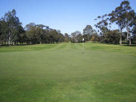 Maffra Golf Club - Accommodation Search