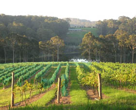 Tilba Valley Wines - Accommodation Search