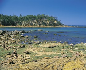 Aslings Beach - Accommodation Search