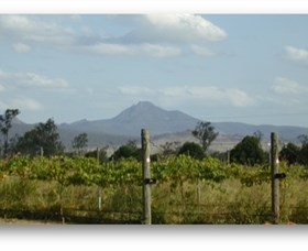 Ironbark Ridge Vineyard - Accommodation Search