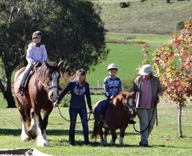 Bathurst Farm Experience - Accommodation Search