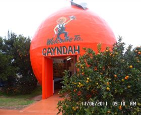 Gayndahs Big Orange - Accommodation Search