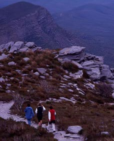 Bluff Knoll Stirling Range National Park - Accommodation Search
