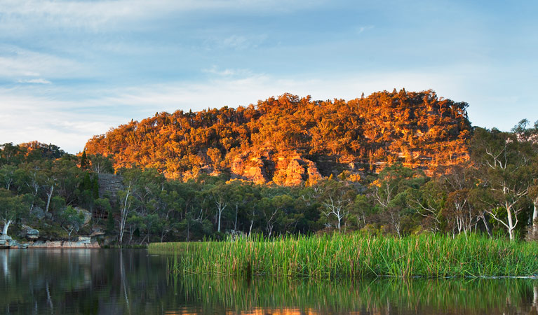 Wollemi National Park - Accommodation Search