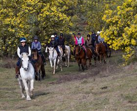 Burnelee Excursions on Horseback - Accommodation Search