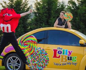 The Lolly Bug - Accommodation Search