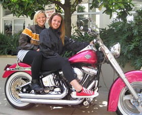 Wild Ride Harley and Motorcycle Tours - Accommodation Search