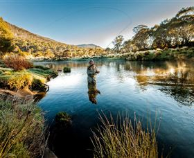 Fly Fishing Tumut - Accommodation Search