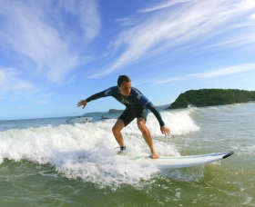 Central Coast Surf School - Accommodation Search