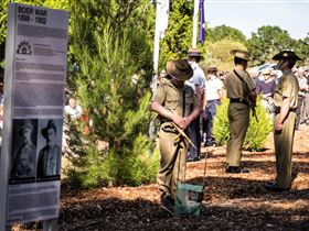 Macclesfield ANZAC Memorial Gardens - Accommodation Search
