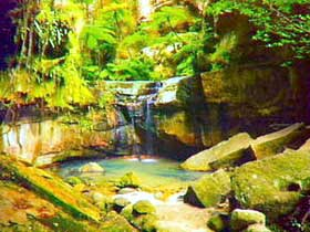 Carnarvon Gorge Carnarvon National Park - Accommodation Search