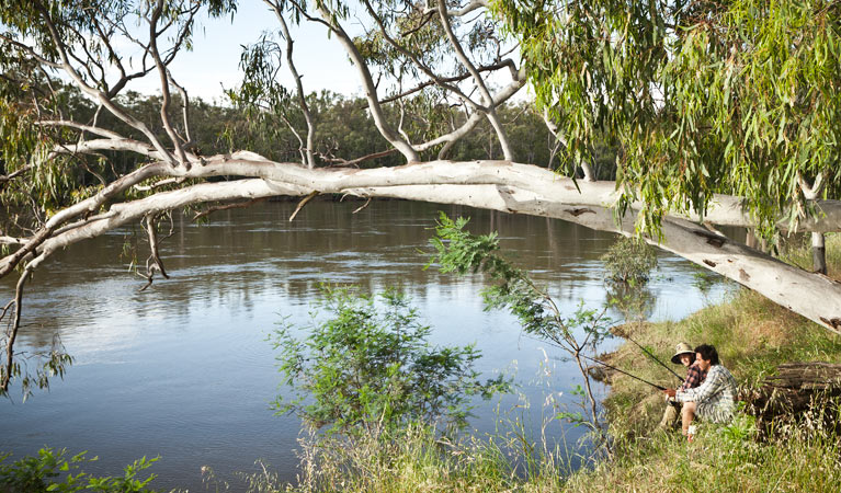 Murray Valley National Park - Accommodation Search