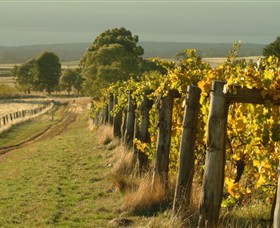 Captains Creek Organic Wines - Accommodation Search