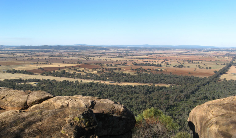 Basin Gully to Eualdrie lookout track - Accommodation Search