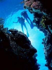 Caves and Canyons Dive Site - Accommodation Search