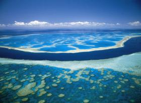 Hardy Reef - Accommodation Search