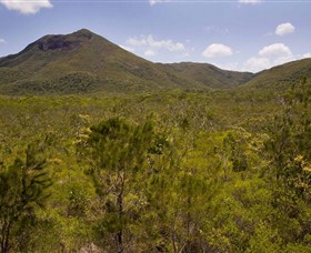 Kutini-Payamu Iron Range National Park CYPAL - Accommodation Search