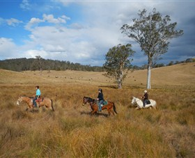 Chapman Valley Horse Riding - Accommodation Search